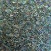 Mattonelle di mosaico verdi delle coperture dell'aliotide di Paua per Backsplash (STA01)