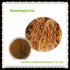 Polvere naturale dell'estratto della genziana del foglio di alta qualità grande
