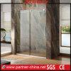 Porta deslizante elegante de tela de chuveiro do projeto da porta do chuveiro do desvio do projeto