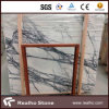 Bello White Marble Slab con High Qualtiy