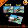 1/2/4/8/16/32/64/128GB Hawaili 조경 카드 USB 펜 드라이브 (YT-3101L11)