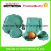 El color verde esmaltó el servicio de mesa fijado para el material sano