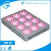 Haute énergie DEL Grow Light pour Flowering Plant et culture hydroponique