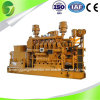 CE 10kw a 1100kw Power Generator Natural Gas Generator