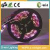 Indicatori luminosi di nastro di RGB LED magia/di Digitahi, inseguenti/colori magici