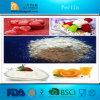 ¡Venta caliente! Fabricante de la pectina de la alta calidad en China