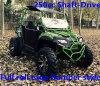 el tope lleno de la jaula del rodillo 250cc va Kart UTV (TKG250-A3)