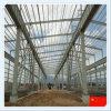 Struttura Multiple-Span del blocco per grafici d'acciaio della Cina per il magazzino