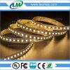 3 anos de luz de tira super do diodo emissor de luz do brilho da garantia 120LEDs 24V