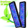 La más nueva iluminación del filón del ciclo LED de la salida del sol de la puesta del sol