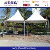Pagoda 6X6m для партии Sdg-6