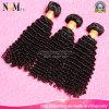 100%はバージンの毛のねじれたカーリーヘアーの織り方のブラジル人の毛を保証した