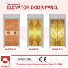 Elevator Cabin Decoration (SN-DP-310)를 위한 스테인리스 Steel Door Panel