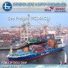 Genova From 심천 LCL에 의하여 중국에 대양 Freight