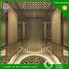 Decoração inoxidável da cabine do elevador da chapa de aço do GV 304 de Hermessteel