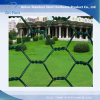 Tela metálica hexagonal para el material de construcción de la decoración