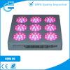 Diodo emissor de luz Grow Panel de Distributor Hot Module 135X3w do achado