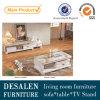 現代居間TV FurnitureおよびCoffee Table (S1300)