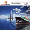 حاويات كاملة الشحن البحري من الصين الى جاكسونفيل، فلوريدا