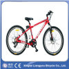 Qualität Lithium Battery Mountain Bike/E Bicycle durch Reliable Manufacturer