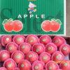 Qualität frischer roter FUJI Apple