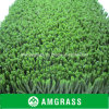 A grama artificial plástica ostenta o relvado sintético