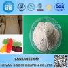 Rolling en Keanding Type Carrageenan voor Vleeswaren