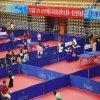 Esportes internos do PVC das cortes de tênis da tabela que pavimentam com o padrão de Ittf