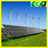 Sistema eléctrico Price de Esg 65W Monocrystalline picovoltio Solar Panel Energy