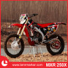 250cc Enduro Dirt Bike
