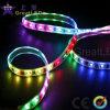 Striscia astuta di Greatleds RGB LED (GRFT1000-42RGBD)