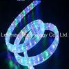LED는 AC220V 네온 등 다중 다채로운 LED 밧줄 빛을 분리한다