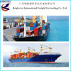 광저우 중국에서 영국 Felixstowe에 바다 또는 대양 운임 출하의 가격 Cbm 싼 LCL/FCL 출하 또는 Southampton 또는 런던 또는 맨처스터 또는 Ipswich 또는 플리머스 또는 리버풀