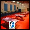 All'interno pavimentazione della corte di ping-pong della pavimentazione di Pingpong