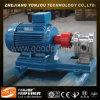 Pompe de biodiesel (pompe de pétrole de vitesse d'acier inoxydable)