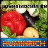 Huminrich melhora a tomada do fertilizante solúvel da alga dos nutrientes (CEC)