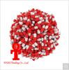 Gewicht-Verlust-Kapsel Soem-erhältliche Kräutergewicht-Verlust-Diät-Pille-Biokost für Gewicht Mangement, das Diät-Pillen abnimmt