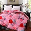 10%-90% одеяло гусыни/утки вниз внутреннее для гостиницы