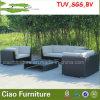 屋外のPEの藤の家具の庭の藤のソファー