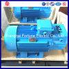 Alto motore della gru di coppia di torsione per macchinario metallurgico