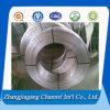 Tubi saldati dell'acciaio inossidabile del fornitore 304 della Cina in bobina