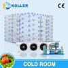 Quarto/caminhada pequenos do refrigerador da capacidade no congelador para peixes/vegetal/frutas