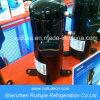 SANYO enrola o compressor C-Sc753h8h