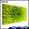Toile imperméable à l'eau de coton de polyester d'impression de Digitals (22  X28  3.8cm)