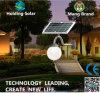 Lumière solaire du panneau DEL de monocristal pour le jardin
