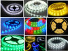 RGB Decorative Lighting Flexible LED Strip (AEYD-1010)