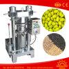 Sesam-Ölpresse-Maschinen-Sesam-Startwert- für ZufallsgeneratorÖlpresse-Maschine