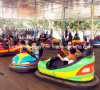 Attractive Skynet Electric Bumper Cars with CE SGS Certificate