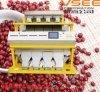 Machine de trieuse de couleur d'haricot rouge de Vsee, séparateur d'haricot