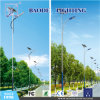 7m de LEIDENE van Pool van het Staal 50W ZonneStraatlantaarn van de Wind (bdtyn-a3)